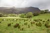 Brandon Peak, Connor Pass, Dingle Peninsula, Kerry, Ireland.