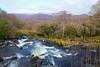 Purple Mountain, Tomies Mountain, Shehy Mountain and Galway's River, Killarney National Park, Kerry, Ireland.