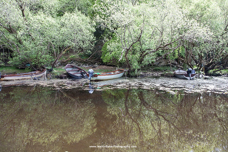Lough Leane, Killarney National Park, Killarney, Kerry, Ireland.