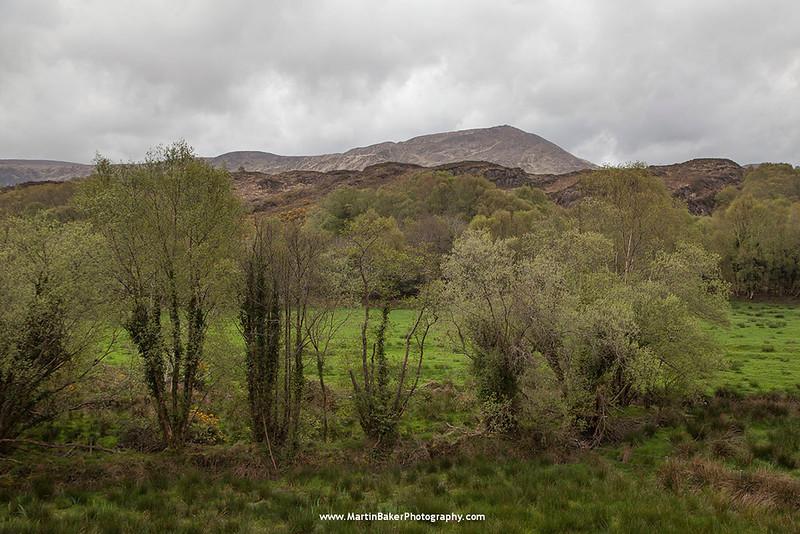 Beara Peninsula, Kenmare, Kerry, Ireland.
