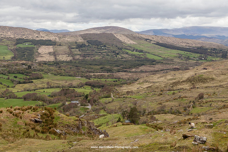 The Caha Mountains, Bonane, Beara Peninsula, Kerry, Ireland.
