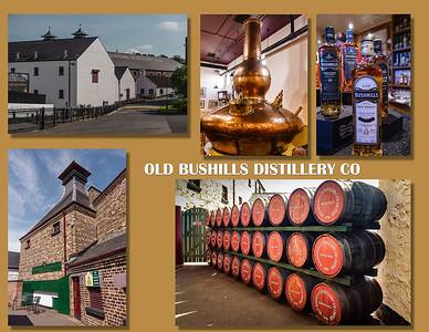 Old Bushmills Distillery Co., 1608