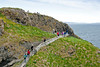 Carrick-a-Rede Rope Bridge out to small island full of birds on Atrium Coast ~ Northern Ireland