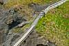Carrick-a-Rede Rope Bridge on Atrium Coast ~ Northern Ireland
