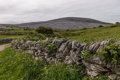 "Burren Nat'l Park, in greater area called The Burren, literally ""rocky place,"" a limestone plateau"