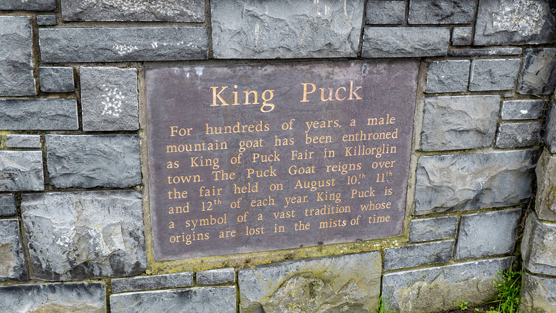 Sign about Puck Fair at the King Puck statue in Killorglin