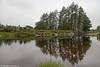 The River Liffey, Ballyward, Kilbride, Wicklow.