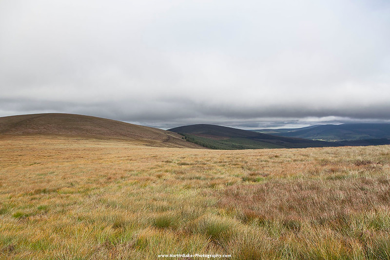 Black Hill, Lackan, Wicklow, Ireland.