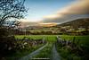 Lackan, Blessington, Wicklow, Ireland.