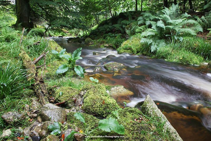 Athdown Brook, Kippure, Wicklow Mountains, Wicklow, Ireland.