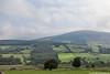 Seefingan Mountain, Ballysmuttan, Wicklow, Ireland.