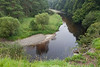 The River Liffey, Threecastles, Kilbride, Wicklow.