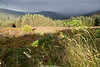 Glencree Valley and Knockree, Wicklow, Ireland.