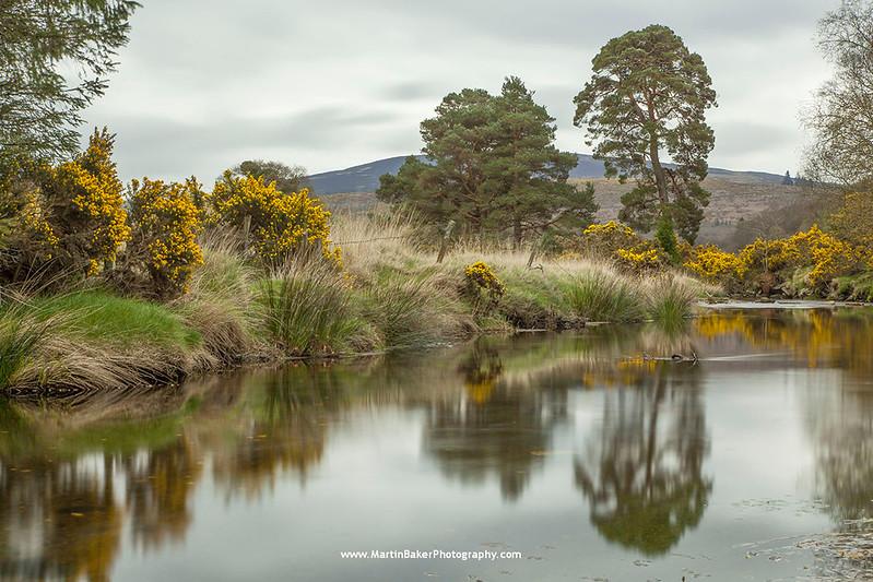 Glendasan river, Glendalough, Wicklow, Ireland.