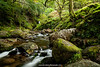 Poulanass Waterfall, Glendalough, Wicklow Mountains National Park, Wicklow, Ireland.
