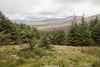 Mullaghcleevaun East and Tonelagee Mountain, Wicklow, Ireland.