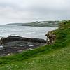 Near Clonakilty, Ireland