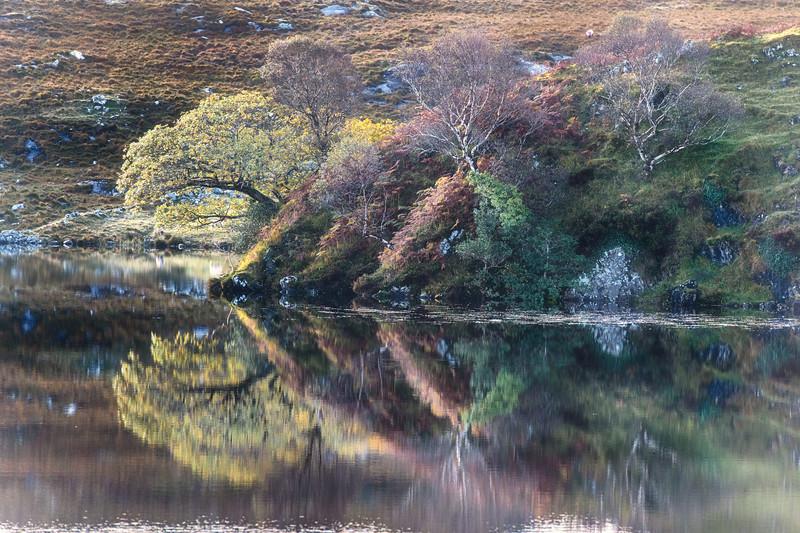 Connemara colours