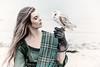 Barn owl and model
