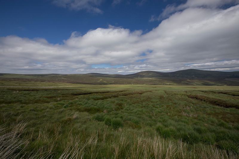 Peat bogs in the Sally Gap of the Wicklow Mountains viewed from the Old Military Road. The Old Military Road was built in 1800 by the English to aid in tracking Irish rebels. Elevation: 1641'.  Wicklow Mountains National Park.  Near the town of Enniskerry, County Wicklow, Ireland.