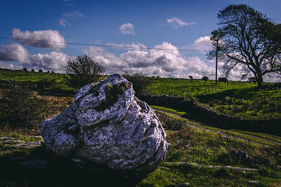 Boulder in an Irish Field with a Horse in the Background