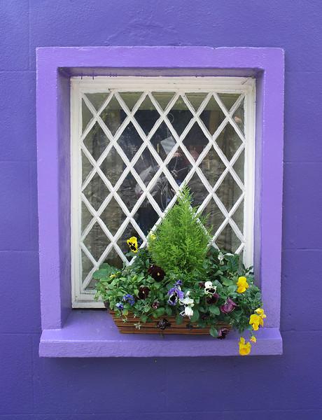 Window - The Giant's Cottage - Ireland