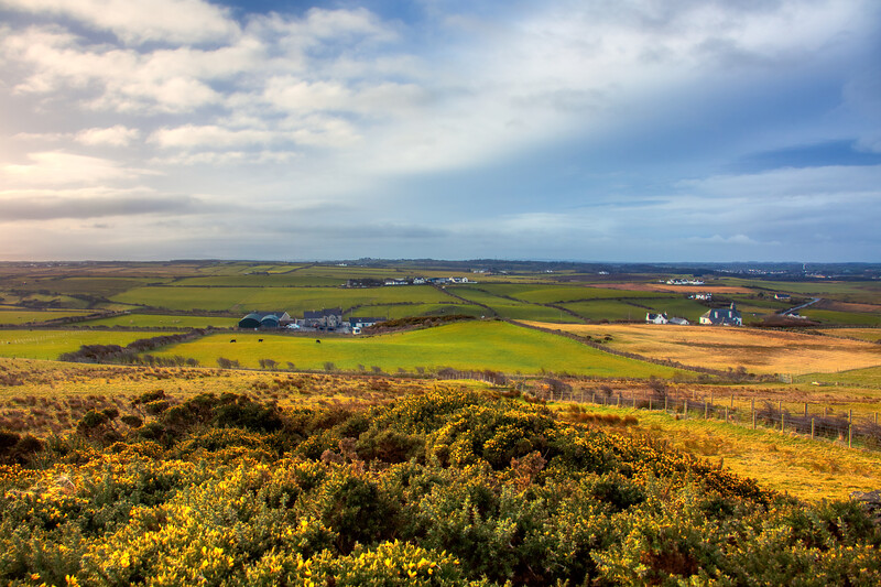 Country Vista - Giant's Causeway - northern Ireland