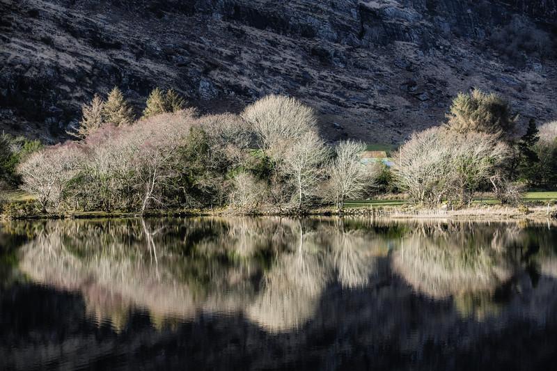 Winter reflections gouganebarra, Cork