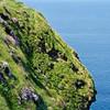 Near the Cliffs of Moher, Ireland