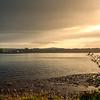 Muckross Shoreline
