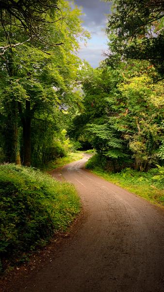 Muckross Road