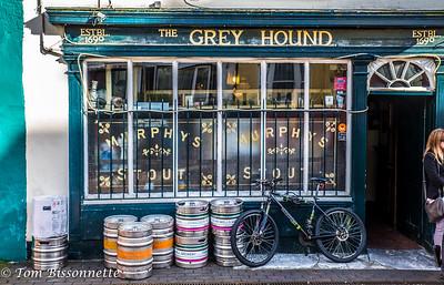 The Grey Hound