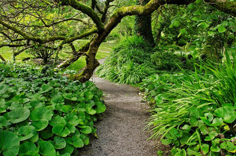 Gardens at Derrynane House, Ring of Kerry, Ireland