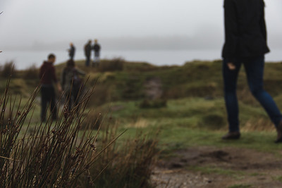 Small Patch of Grass with People walking behind it on the Irish Wetlands