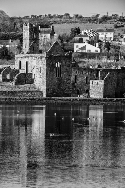 Timoleague abbey - Cork