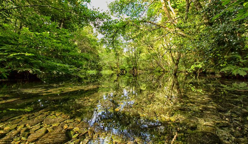 Εθνικό Πάρκο Killarney (ΙΡΛΑΝΔΙΑ)
