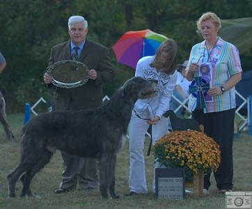 Winners Dog - Rockhart Elysee