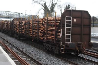 Timber Wagon  -  30517.