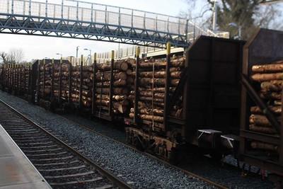 Timber Wagon  -  30518.