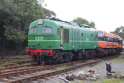C231 at Downpatrick on 06.08.16.