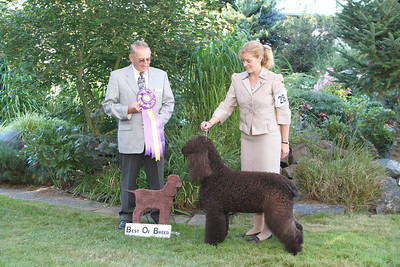 Best of Breed - IMG_4740