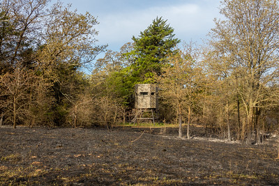 Pre fire preparation kept my South Wildlife Stand free from damage.