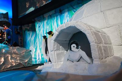2012 VBS: Polar Trek