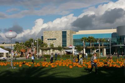 2010-10-23 Saturday Pumpkin Patch