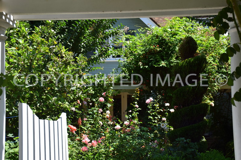 1037 Star Park Circle, Coronado, CA - Date Unknown, Mary Cossitt Residence #2, Irving Gill, Architect