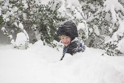 Zev - 3 years - January 2016 snowstorm