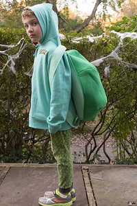 Halloween 2017 - Zev - age 5