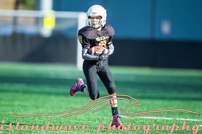 Spartans vs Southside Peewee Playoff, Nov 4, 2018