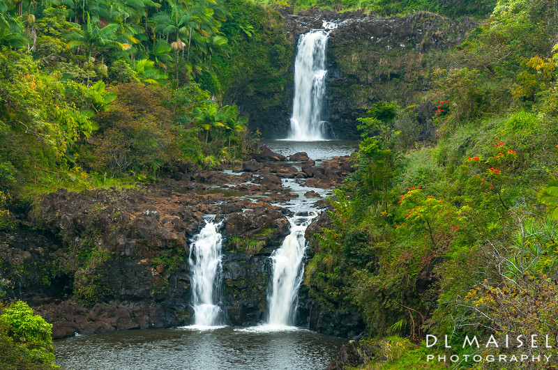Umauma Falls Big Island