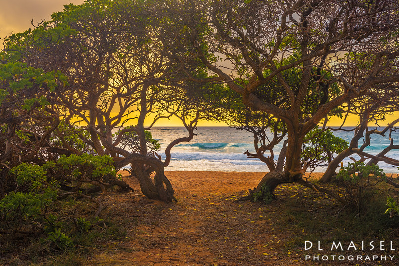 Sunrise at Paliku Beach (Donkey Beach) Kauai